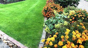 Beetgestaltung - Gartengestaltung - Garten Holz Vision | Gartenbau - Mönchengladbach