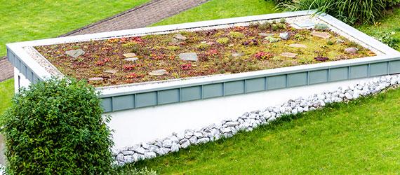 Dachbegrünung - Gartengestaltung - Garten Holz Vision | Gartenbau - Mönchengladbach