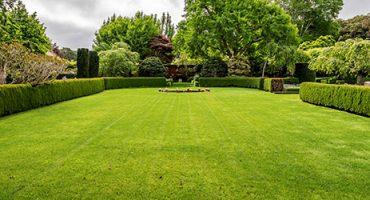 Anlegen von Raseflächen - Rollrasen - Gartengestaltung - Garten Holz Vision | Gartenbau - Mönchengladbach